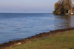 安大略的Rice湖 库存照片