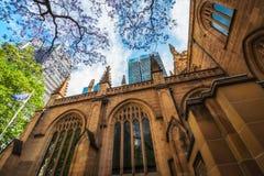 安得烈` s大教堂门面在悉尼 库存图片