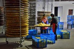 """安徽,中国†""""大约2017年10月:在菊花黄色花烘干的工厂里面的妇女 免版税库存照片"""