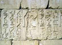 安心在Sakkara,埃及 库存照片