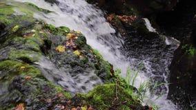 安慰,镇定瀑布在9月期间在苏格兰 生活水  影视素材