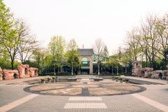 安排美术馆和平定水池的花 免版税库存图片