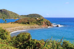 安提瓜岛巴布达海岸线 库存图片