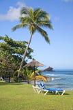 安提瓜岛海岸线 库存照片