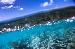 安提瓜岛 库存图片