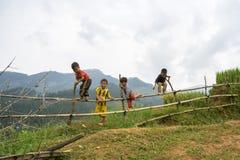 安沛市,越南- 2016年9月17日:少数族裔由露台的领域哄骗使用在篱芭在范陈区 图库摄影