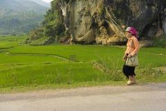 安沛市,越南- 2014年4月11日:未认出的泰国妇女沿米领域和岩石小山回家 库存照片