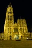 安特卫普大教堂前面晚上正方形 库存图片