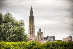 安特卫普,比利时大教堂  库存照片