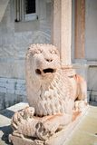 安科纳中央寺院的protiro的大理石狮子  免版税库存照片