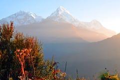 安纳布尔纳峰断层块。尼泊尔。 图库摄影