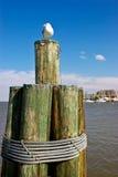 安纳波利斯港口 免版税图库摄影