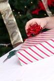 安置弓的现有量在礼品 库存照片