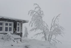 安置部分冬天 库存照片