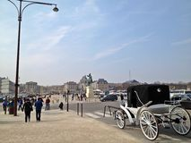 安置d'Armes (凡尔赛) 免版税库存图片