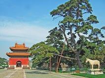 安置zhaoling的坟茔 库存照片
