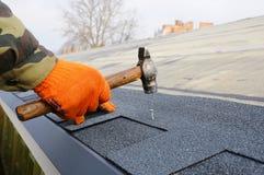 安装沥清屋顶木瓦的工作者手 在钉子的工作者锤子在屋顶 盖屋顶的人锤击在屋顶木瓦的一个钉子 库存照片