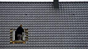 安装顶楼窗口的盖屋顶的人 免版税图库摄影