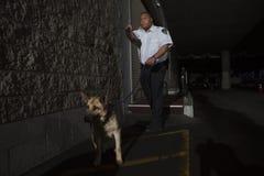 治安警卫在与狗的巷道追求中 库存图片