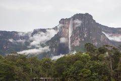 安赫尔瀑布在委内瑞拉 免版税库存照片