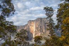 安赫尔瀑布在轻的早晨最高的瀑布在世界上 库存图片