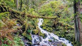 安赫尔瀑布 库存图片