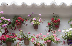 安达卢西亚的露台 库存照片