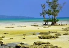安达曼群岛 库存照片