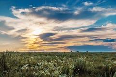 安静的夏天晚上、日落在领域,和平和quiet_ 库存照片