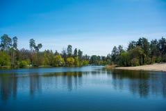 安静的森林湖 库存照片