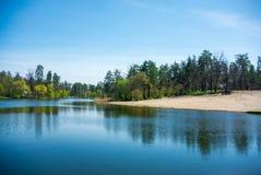 安静的森林湖 免版税库存照片