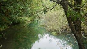 安静的河在夏日 免版税库存照片