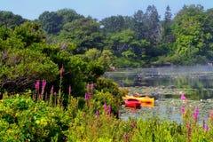 安静的海洋水池在缅因 图库摄影