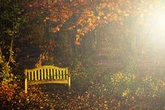 安静的秋天 免版税图库摄影