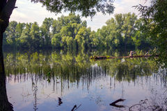 安静的老池塘 免版税库存图片