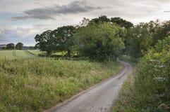 安静的车道, Cotswolds,英国 库存图片