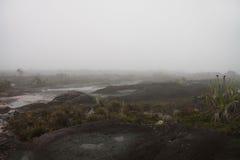 完全丢失在雾看起来岩石地形的另一个行星 免版税库存照片
