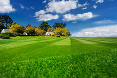 完全镶边的新近地被割的庭院草坪在夏天 免版税库存图片