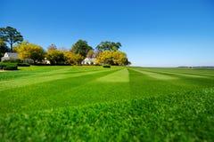 完全镶边的新近地被割的庭院草坪 免版税库存照片