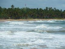 完善的地方一个假日在斯里兰卡 免版税图库摄影