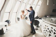 完善的夫妇新娘,摆在和亲吻在他们的婚礼之日的新郎 库存照片