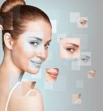 完善的女性面孔由不同的面孔做成 库存图片