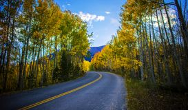 完善的山科罗拉多旅行路通过在10月山的秋天颜色编织 免版税库存照片