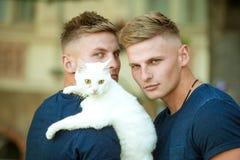 完善的毛茸的朋友 猫是他们的家庭的部分 有逗人喜爱的猫的肌肉人 在步行的愉快的猫所有者与宠物 免版税库存照片