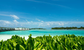 完善的热带海岛天堂海滩 免版税库存照片