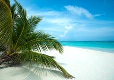 完善的热带海岛天堂海滩 库存图片