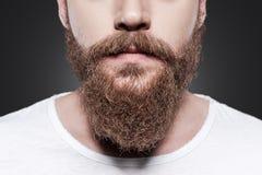 完善的胡子 库存图片
