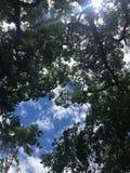 完善的蓝色令人敬畏的天空 库存照片