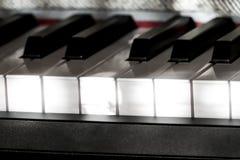 完善的钢琴钥匙在与灰色盖子的温和的阳光下 免版税库存照片