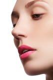 完善的嘴唇 应用光泽嘴唇组成专业人员 Lipgloss 美丽的特写镜头女孩纵向 与明亮的构成的白种人少妇模型 免版税库存照片